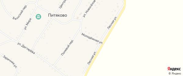 Молодежная улица на карте села Питяково с номерами домов
