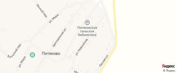 Улица Новоселов на карте села Питяково с номерами домов