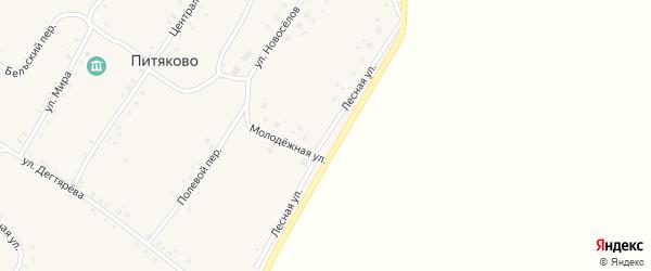 Лесная улица на карте села Питяково с номерами домов