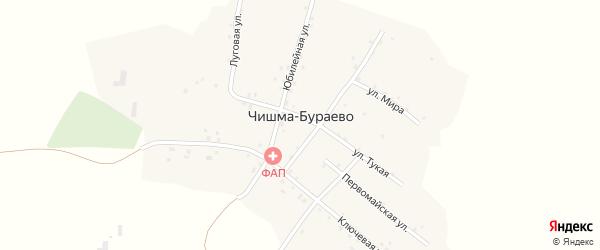 Луговая улица на карте деревни Чишма-Бураево с номерами домов