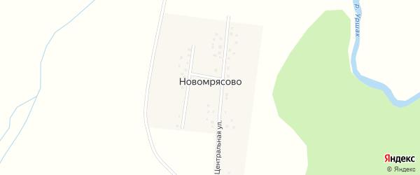 Центральная улица на карте деревни Новомрясово с номерами домов
