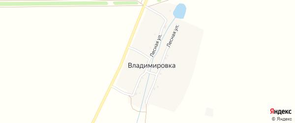 Лесная улица на карте деревни Владимировки с номерами домов