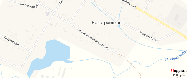 Интернациональная улица на карте Новотроицкого села с номерами домов