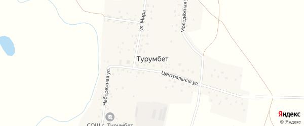 Центральная улица на карте села Турумбета с номерами домов