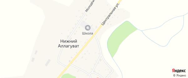 Центральная улица на карте деревни Нижнего Аллагувата с номерами домов
