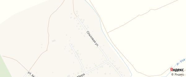 Ольховая улица на карте села Салихово с номерами домов