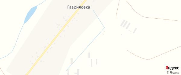 Центральная улица на карте села Гавриловки с номерами домов