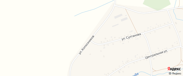 Улица Колхозников на карте деревни Мамяково с номерами домов