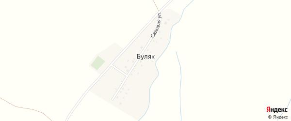 Садовая улица на карте деревни Буляка с номерами домов