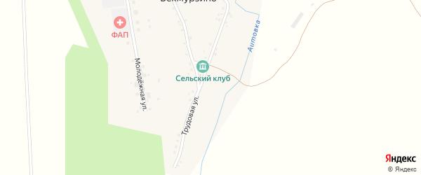 Трудовая улица на карте села Бекмурзино с номерами домов