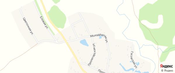 Молодежная улица на карте деревни Сосновки с номерами домов