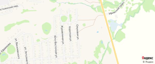 Ольховая улица на карте Бирска с номерами домов