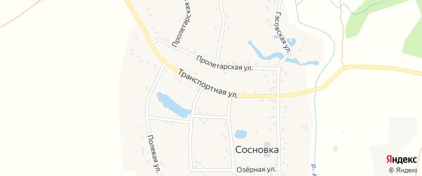 Транспортная улица на карте деревни Сосновки с номерами домов