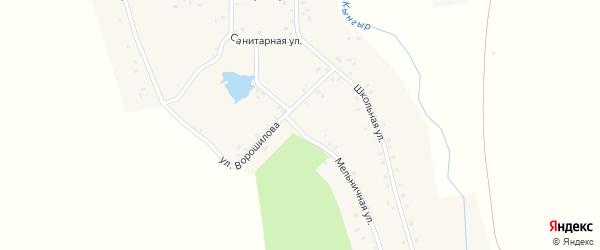 Улица Ворошилова на карте деревни Сосновки с номерами домов