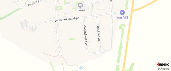 Молодежная улица на карте села Баженово с номерами домов