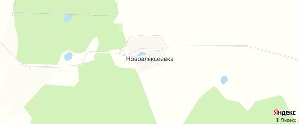 Карта деревни Новоалексеевки в Башкортостане с улицами и номерами домов