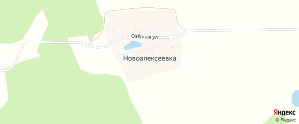 Озерная улица на карте деревни Новоалексеевки с номерами домов