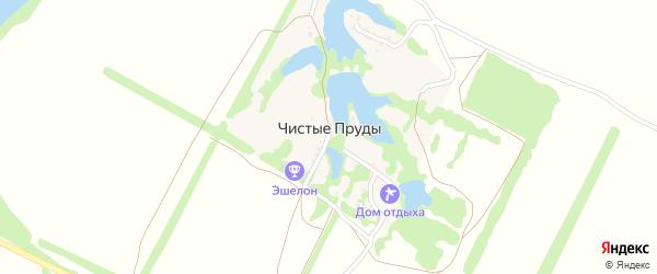 Прудовая улица на карте хутора Чистые Пруды с номерами домов