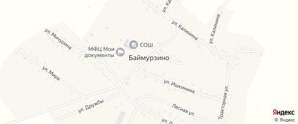 Садовый проулок на карте деревни Баймурзино с номерами домов