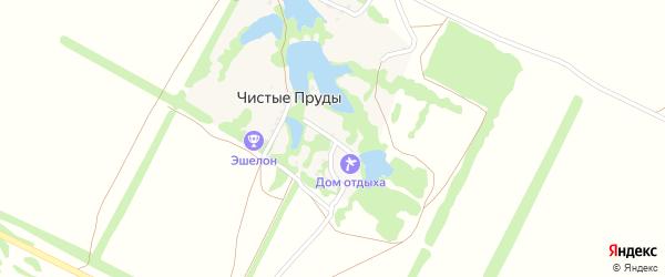 Теневая улица на карте хутора Чистые Пруды с номерами домов