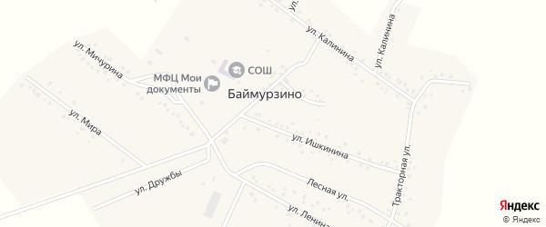 Улица Мичурина на карте деревни Баймурзино с номерами домов