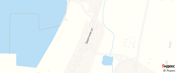 Заречная улица на карте деревни Волково с номерами домов
