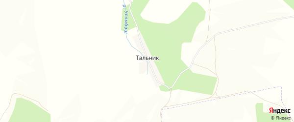 Карта деревни Тальника в Башкортостане с улицами и номерами домов