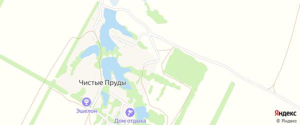Березовая улица на карте хутора Чистые Пруды с номерами домов