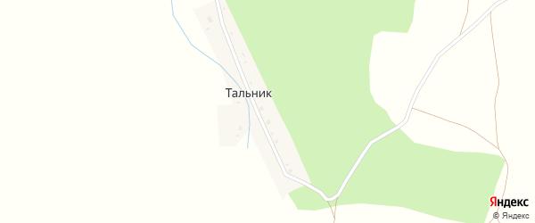 Центральная улица на карте деревни Тальника с номерами домов