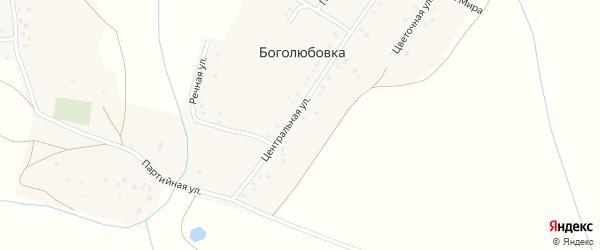 Центральная улица на карте деревни Боголюбовки с номерами домов
