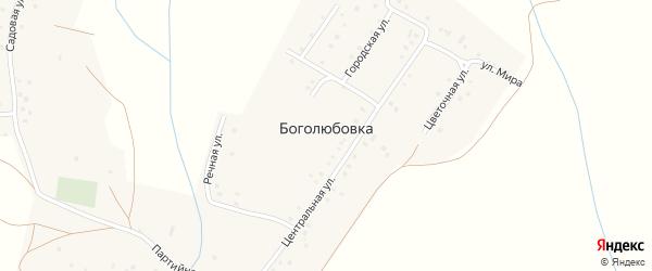 Цветочная улица на карте деревни Боголюбовки с номерами домов