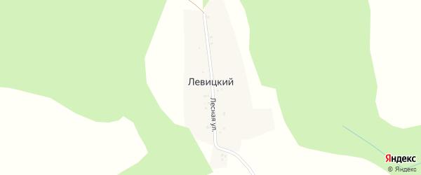 Лесная улица на карте деревни Левицкого с номерами домов