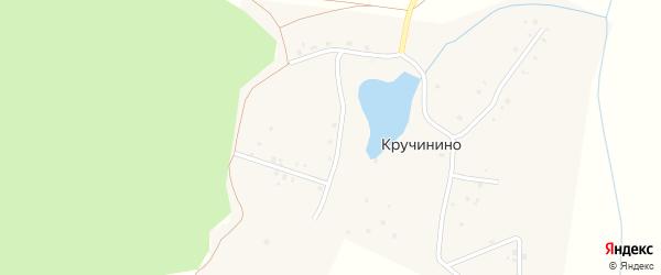 Улица Кручинино на карте деревни Кручинино с номерами домов