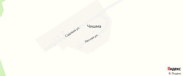 Лесная улица на карте деревни Чишмы с номерами домов