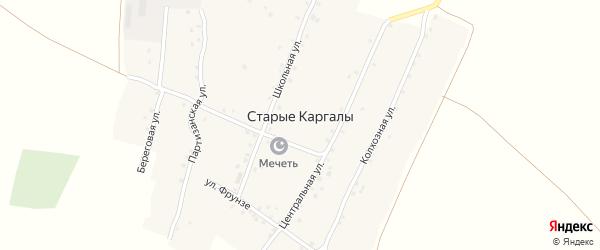 Центральная улица на карте деревни Старые Каргалы с номерами домов