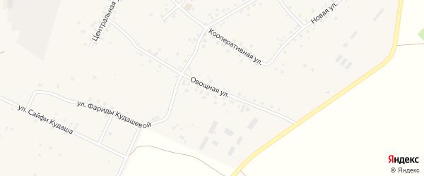 Овощная улица на карте села Кляшево с номерами домов