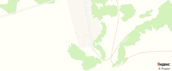 Полевая улица на карте деревни Романовки с номерами домов