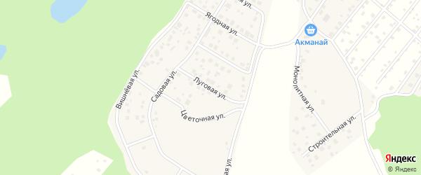 Луговая улица на карте деревни Демы с номерами домов