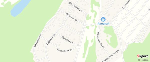 Ягодная улица на карте деревни Демы с номерами домов