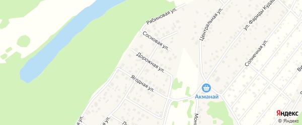 Дорожная улица на карте деревни Демы с номерами домов