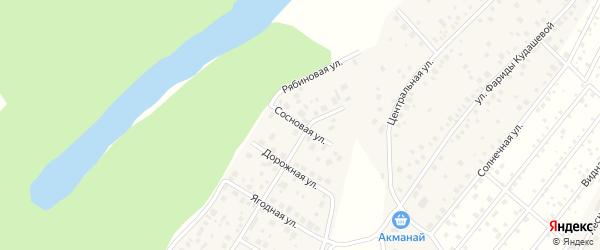 Сосновая улица на карте деревни Демы с номерами домов