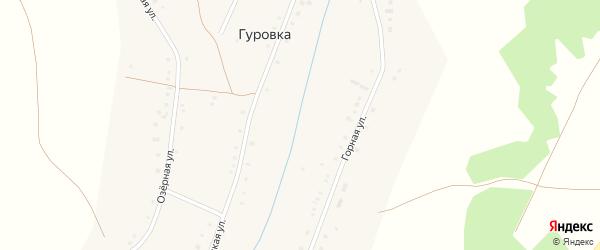 Дорожная улица на карте села Гуровки с номерами домов