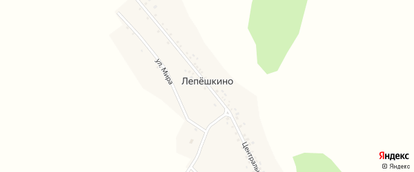 Улица Мира на карте деревни Лепешкино с номерами домов
