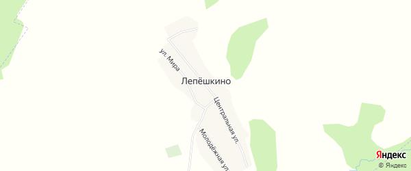 Карта деревни Лепешкино в Башкортостане с улицами и номерами домов