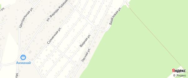 Лесная улица на карте деревни Лекаревки с номерами домов