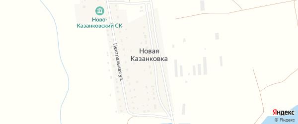 Центральная улица на карте деревни Новой Казанковки с номерами домов
