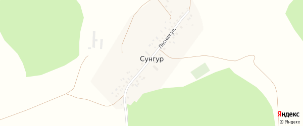 Лесная улица на карте деревни Сунгура с номерами домов
