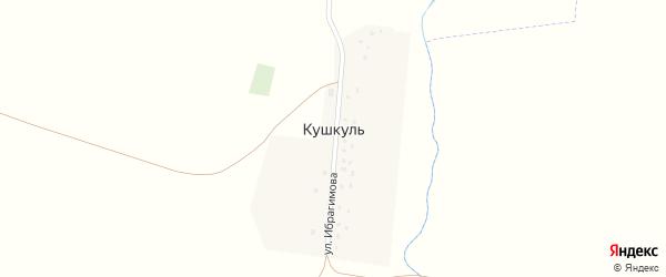 Улица Ибрагимова на карте деревни Кушкуля с номерами домов