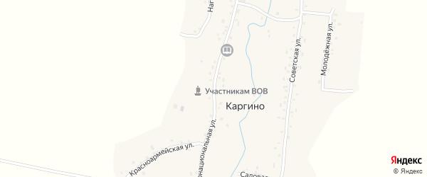 Интернациональная улица на карте деревни Каргино с номерами домов