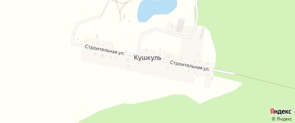 Строительная улица на карте деревни Кушкуля с номерами домов